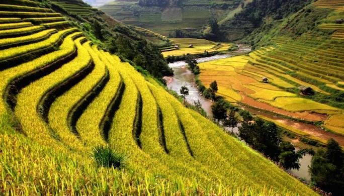 luna-de-miel-vietnam5