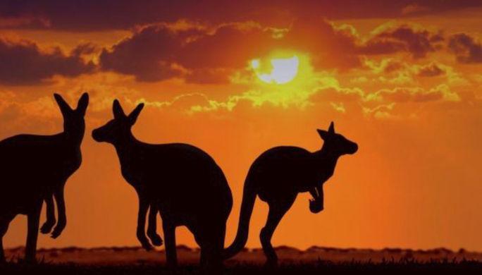 australie-illustration-1_4026045