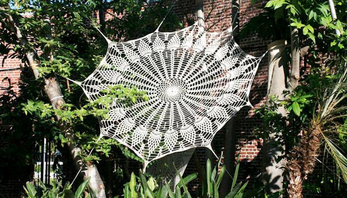 03-Spider-Web