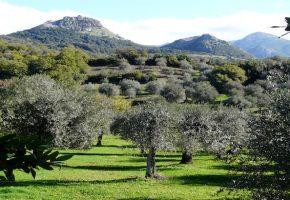 Sardaigne : La belle inconnue