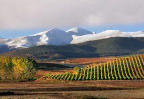 3 raisons de partir vite jouer au golf dans la Rioja