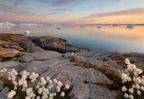 A la découverte des paysages spectaculaires du Groenland
