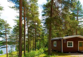 Vacances : l'hébergement en plein air séduit