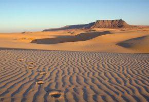 Escapade sur le sable chaud de la Mauritanie