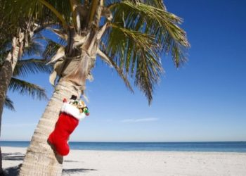 Iles Canaries, Travel, Noel, voyage, vacances, Infotravel.fr