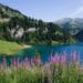 Arêches-Beaufort (Savoie) Un été au paradis...