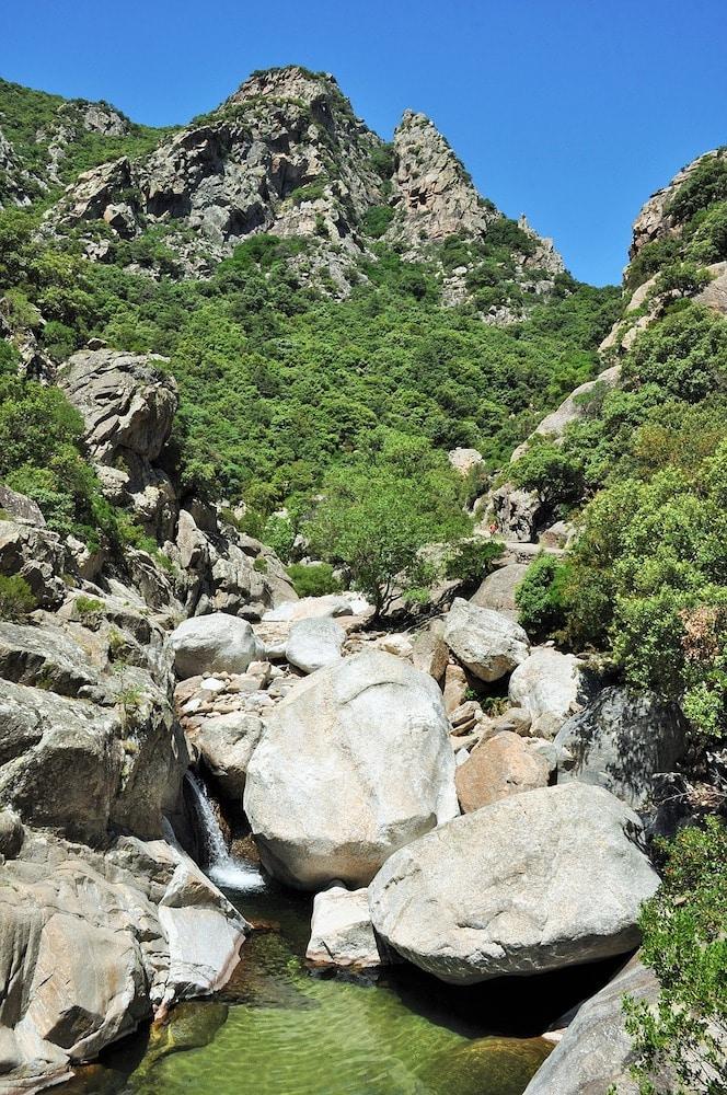 Les joies de la montagne en été