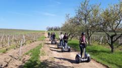 Tours Val de Loire :6 idées d'éco-escapades