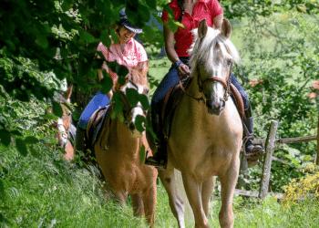 Un été à cheval en pleine nature