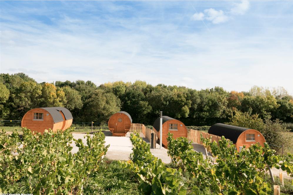 Oenotourisme : L'autre façon de découvrir la France