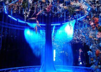 Mulhouse Jusqu'au 11 octobre fête les 20 ans du Grand Jardin de Folie'Flore au Parc Expo.