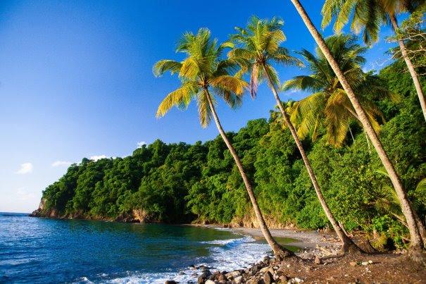 La Martinique de plage en plage