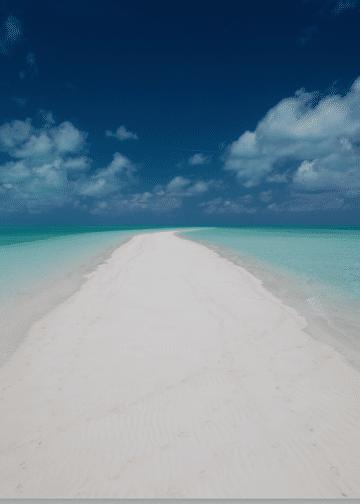 Les Bahamas: Promotion de janvier.