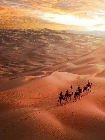 Abu Dhabi vous emmène dans le désert