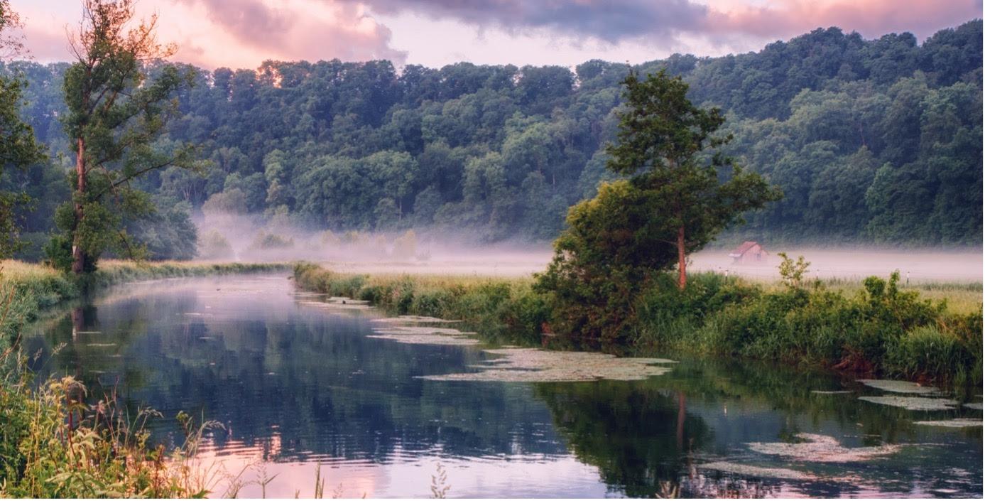 Les jardins du lac de Constance
