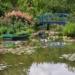 Cultiver son jardin dans l'Oise