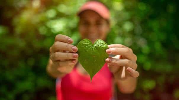 Comment le Costa Rica allie tourisme et développement durable