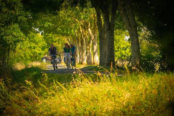 La Vélobuissonnière : 250km d'échappées nature